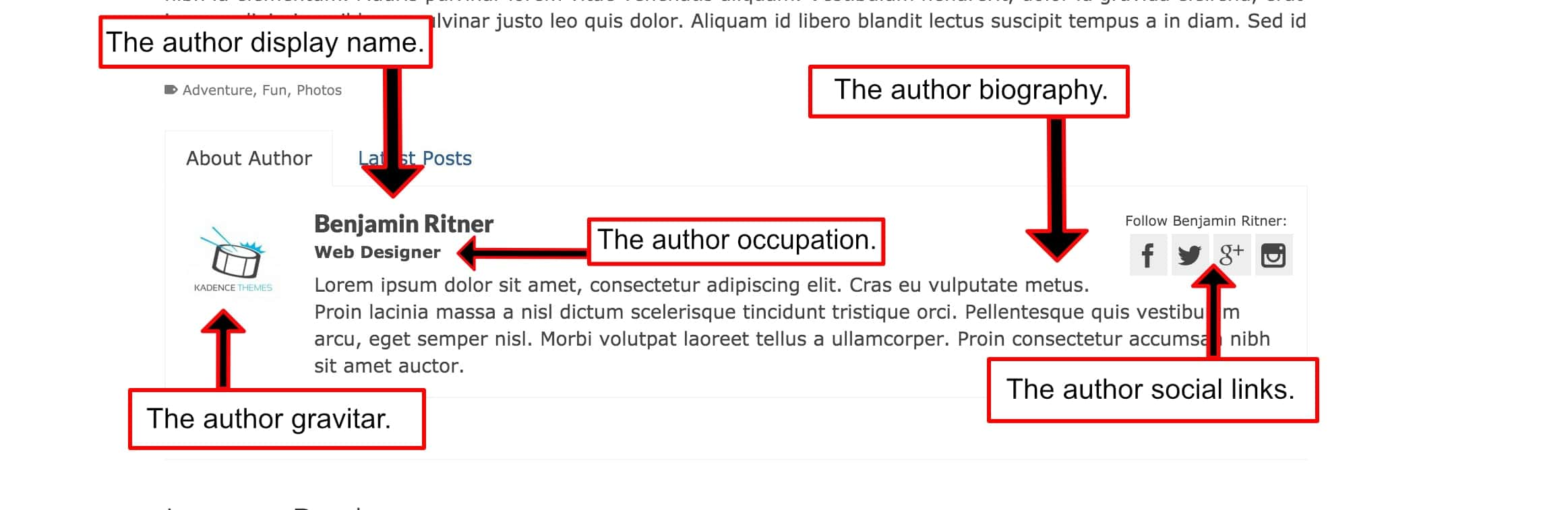 About The Author-min